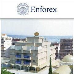 Enforex, Марбелья