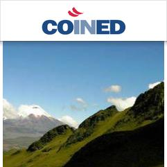 COINED, Conca