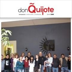 Don Quijote / Solexico Language & Cultural Centers, Oaxaca