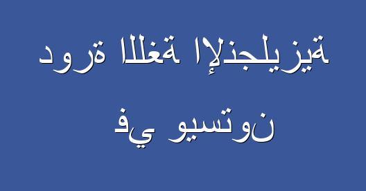 مربع المشاركة عبرالفيسبوك صورة المدينة