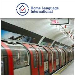 Study & Live in your Teacher's Home, Londra