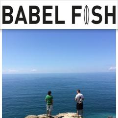 Babel Fish, Cornualles