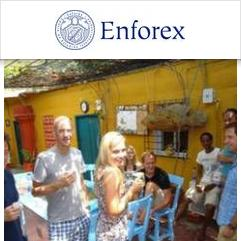 Enforex, Cartagena