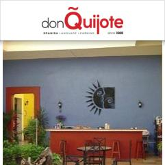 Don Quijote / Solexico Language & Cultural Centers, オアハカ