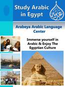 Arabeya Arabic Language Center Brochure (PDF)