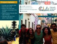Culture and Language Abroad Brosúra (PDF)