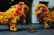 Chinese New Year Celebration & Lion Dance