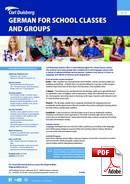 Combo: Grupo + Indiv Carl Duisberg Centrum (PDF)