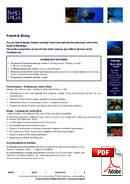 Fransk & Dykking France Langue (PDF)
