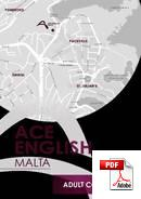 Cambridge Advanced Certificate ACE English Malta (PDF)