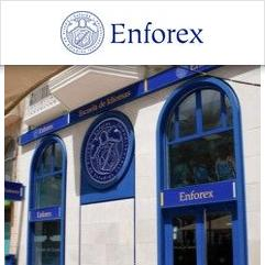 Enforex school alicante