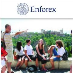 Enforex language school granada