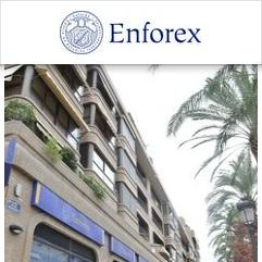Enforex valencia reviews