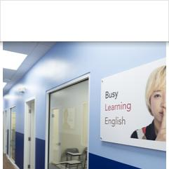 Open Hearts Language Academy, 보카 라톤