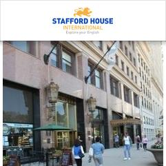 Stafford House International, 시카고