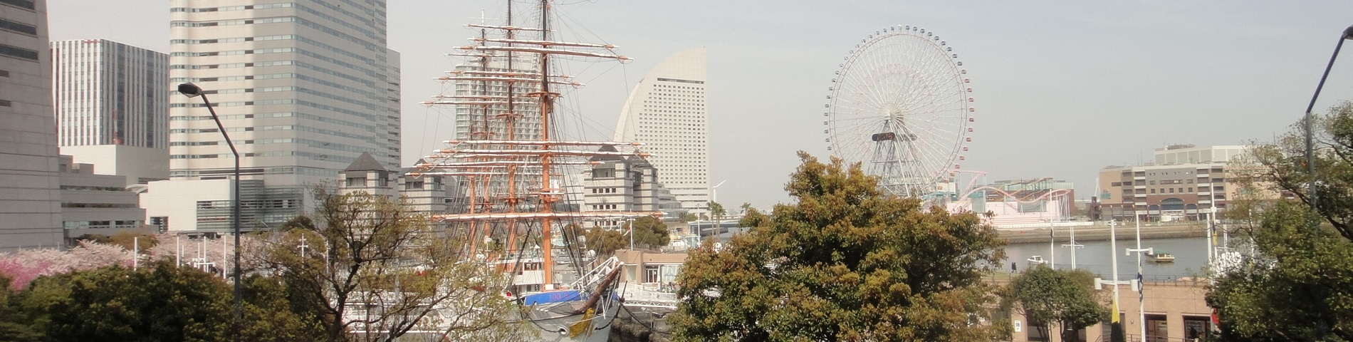 Yokohama International Education Academy bilde 13