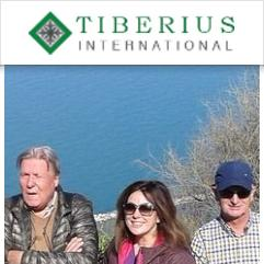 Tiberius International, Римини