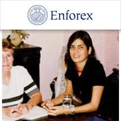 Enforex, Havanna