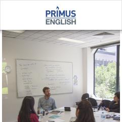 Primus English, Melbourne