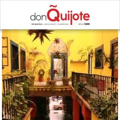 Don Quijote / Solexico Language & Cultural Centers, Ґуанахуато