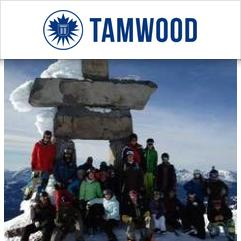 Tamwood Language Centre, 威士拿